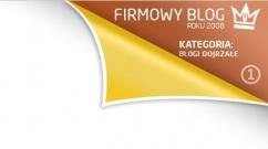 Blog firmowy 2008 - blogi dojrzałe